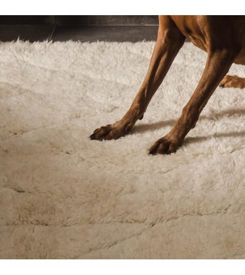 tapis pour salon